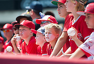 Fans look for autographs before the Angels' preseason game against the Chicago Cubs at Angel Stadium Sunday.<br /> <br /> <br /> ///ADDITIONAL INFO:   <br /> <br /> angels.0404.kjs  ---  Photo by KEVIN SULLIVAN / Orange County Register  --  4/3/16<br /> <br /> The Los Angeles Angels take on the Chicago Cubs at Angel Stadium during a preseason game at Angel Stadium Sunday.<br /> <br /> <br />  4/3/16