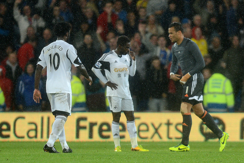 Swansea City's Michel Vorm walks off after being shown the red card <br /> <br /> Photo by Ian Cook/CameraSport<br /> <br /> Football - Barclays Premiership - Cardiff City v Swansea City - Sunday 3rd November 2013 - Cardiff City Stadium - Cardiff<br /> <br /> © CameraSport - 43 Linden Ave. Countesthorpe. Leicester. England. LE8 5PG - Tel: +44 (0) 116 277 4147 - admin@camerasport.com - www.camerasport.com