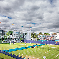 Fevertree Championships - Queens Club