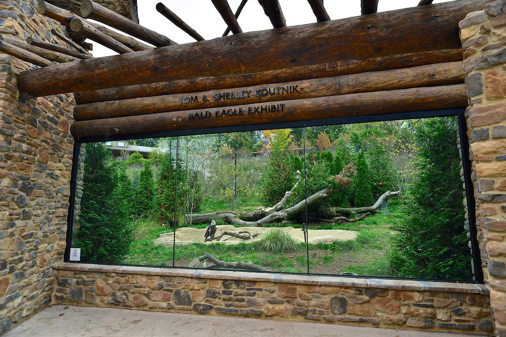 Tom & Shelley Koutnik Bald Eagle exhibit at the Akron Zoo.
