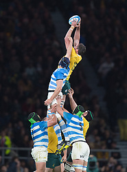 October 9, 2016 - London, Greater London, England - Australia's Kane Douglas jumps in line out .during The Rugby Championship match between Argentina and Australia at WembleyTwickenham on 8th October 2016  (Credit Image: © Kieran Galvin/NurPhoto via ZUMA Press)