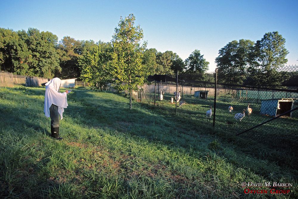 Mike Kreger Observing Whooping Cranes