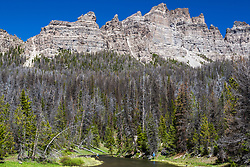 Towering Pinnacle  Peak dwarfs the fisherman enjoying this beautiful but overfished stretch of Rocky Mountain trout stream.