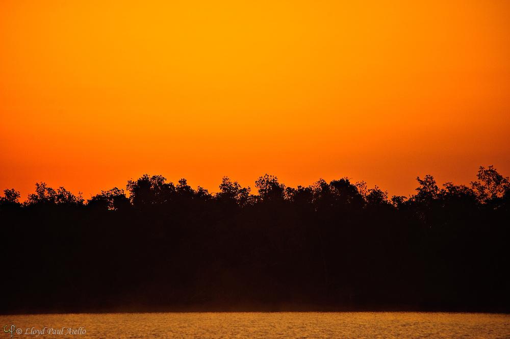 The eastern sky glows orange before sunrise at Plate Creek Bay, Everglades, Florida