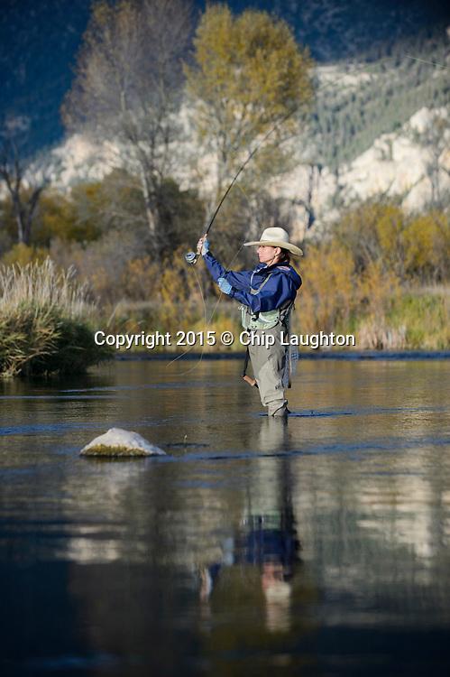 fly fishgin stock photo image