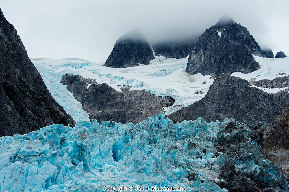 An icy blue glacier crunches its way down into the ocean as it melts.