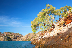 A single tree clings to a rocky outcrop on the edge of Dugong Bay on the Kimberley coast.