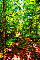 Judge C. R. Magney State Park is a state park of Minnesota, USA, on the North Shore of Lake Superior.