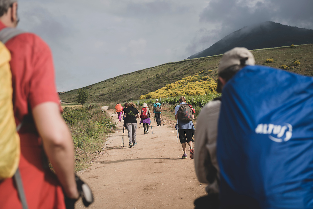 Pilgrims walking the Camino de Santiago on approach to the small town of Cirauqui, Navarre, Spain.<br />June 4, 2018.
