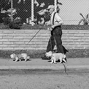Fred Jamison walks his two dogs along La Salle Avenue in Seaside, Calif. on Dec. 12, 2017.