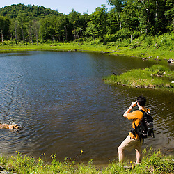 A man takes pictures of his dog in a pond in Eden, Vermont. Green Mountains.