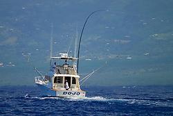 sport fishing boat, running with Greenstick tuna rig, Kona Coast, Big Island, Hawaii, USA, Pacific Ocean