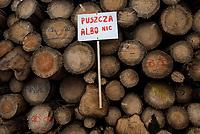 Postolowo, Puszcza Bialowieska, 30.12.2017. Zimowy Spacer Obywatelski w Puszczy . Akcja zostala zorganizowana po tym , jak Nadlesnictwo Hajnowka zamknelo dla turystow kolejne obszary lesne . Protestujacy uwazaja , ze przyczyni sie do zmniejszenia zainteresowania Puszcza turystow a tym samym po raz kolejny oslabi branze turystyczna w regionie Puszczy Bialowieskiej N/z sciete drewno przygotowane do wywozki fot Michal Kosc / AGENCJA WSCHOD