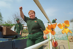 Woman with Downs Syndrome at work on community allotment project,