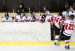 Clemens Unterweger and other players of Austria  during the ice hockey match between National teams of Lithuania (LTU) and Austria (AUT) at 2011 IIHF World U20 Championship Division I - Group B, on December 12, 2010 in Ice skating Arena, Bled, Slovenia.  (Photo By Vid Ponikvar / Sportida.com)