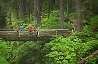 Bridge over Sol Duc Falls, Olympic National Park