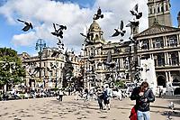 Pigeons in George Square