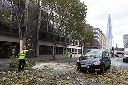 © Licensed to London News Pictures. 21/10/2014. London, UK. A tree is cut up and removed from the road in Southwark in London after it fell onto a mini cab during windy weather this morning. Photo credit : Vickie Flores/LNP