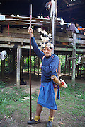 Penan with headress. The Penan native people are learning to live a sedentary lifestyle which includes living in wooden houses, farming and fishing. They were traditionally nomadic hunter-gatherers. These days they have become forcibly settled as their hunting grounds have been largely destroyed by logging concessions and palm-oil plantations.<br /><br />There are only a few, difficult to find, scarce communities of semi-nomadic Penan nowadays, who live like of those of old, hidden away deep in the tropical forest, hunter-gathering, wearing loin cloth 'chawats', hunting wild boar with blowpipes and poison arrows, and extracting sago-root flour, their staple carbohydrate, by hand.<br /><br />Borneo native peoples and their rainforest habitat revisited two decades later: 1989/1991 and 2012/2014/2015. <br /> <br /> Sarawak's primary rainforests have been systematically logged over decades, threatening the sustainable lifestyle of its indigenous peoples who relied on nomadic hunter-gathering and rotational slash & burn cultivation of small areas of forest to survive. Now only a few areas of pristine rainforest remain; for the Dayaks and Penan this spells disaster, a rapidly disappearing way of life, forced re-settlement, many becoming wage-slaves. Large and medium size tree trunks have been sawn down and dragged out by bulldozers, leaving destruction in their midst, and for the most part a primary rainforest ecosystem beyond repair. Nowadays palm oil plantations and hydro-electric dam projects cover hundreds of thousands of hectares of what was the world's oldest rainforest ecosystem which had some of the highest rates of flora and fauna endemism, species found there and nowhere else on Earth, and this deforestation has done irreparable ecological damage to that region