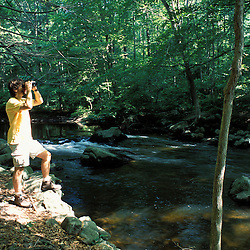 Birdwatching along the Mianus River at the Treetops Estate.  Purchased by the TPL for the Greenwich Land Trust and the State of CT in 2001.  Greenwich, CT