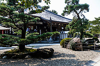 Daikoji is temple No. 67 on theShikoku Pilgrimage.  The temple is located in the countryside on the outskirts of Kannonji.The hugecamphor tree in the compound is said to have beenplanted by Kukai. The statue is of Tendai Daishi, the Chinese founder of T'ien-t'ai Buddhism. The temple has Daishido Halls for both theShingon and Tendai sects. Like many other temples, this temple was burned by the warriors of Chosokabe Motochika in the 16th century.  In 792 it was visited by Daishi on a preaching tour, then in 822 it was restored with an imperial edict by Emperor Saga, then later moved to a small hill surrounded by forest where it currently stands. At the time, there were 24 dwellings of the Shingon Sect and 12 of the Tendai Sect within the same compound, and while having such an unusual history of both sects studying within the same precincts, it is currently part of the Shingon Zentsuji Sect.
