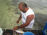 Caye Caulker, Belize Fisherman cleans a fish