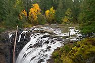 Fall Color and Englishman River Falls in Englishman River Falls Provincial Park near Nanaimo, British Columbia, Canada