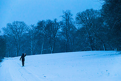 A woman takes pictures with her smartphone on Hampstead Heath as dawn breaks in London. Hampstead, London, February 01 2019.