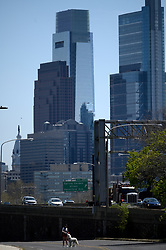 A dog walker is seen on East River Drive, with the Center City Philadelphia, PA skyline in the background on April 28, 2020. Despite the state-wide stay-at-home order still in effect, spring weather draws hundreds to exercise outdoors.