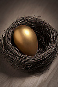 Close up of a large golden egg resting in a bird's nest sitting on a wooden surface
