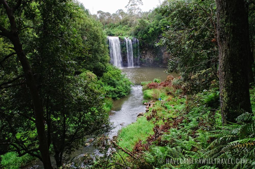 Dangar Falls near Dorrigo in north central New South Wales on Waterfall Way