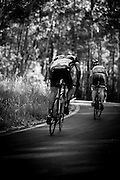 Motivation: No bones about it, Sunday's epic will hurt. While our riders chart out a previously unridden route, our brains will be mapping fresh neural pathways to more efficiently deliver pain. We have trained our bodies to withstand the physical trauma, and now switch to mentally preparing for the dark moments that will invariably come. We seek a source of motivation.