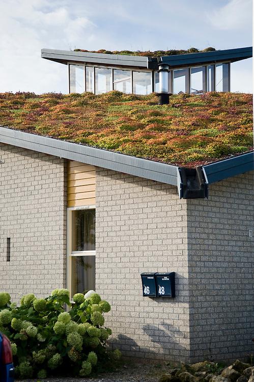 Nederland, Culemborg, 1 sept 2009.Duurzame woonwijk EVA Lanxmeer. Woonwijk met zeer energie-zuinige woningen.  Heel goede isolatie, zonnepanelen voor electriciteit en warm water, maar ook innovatieve huizen, bijvoorbeeld onder een kas..Dit huis heeft een grasdak..Foto (c) Michiel Wijnbergh