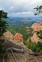 Bryce Canyon National Park, Utah, USA,