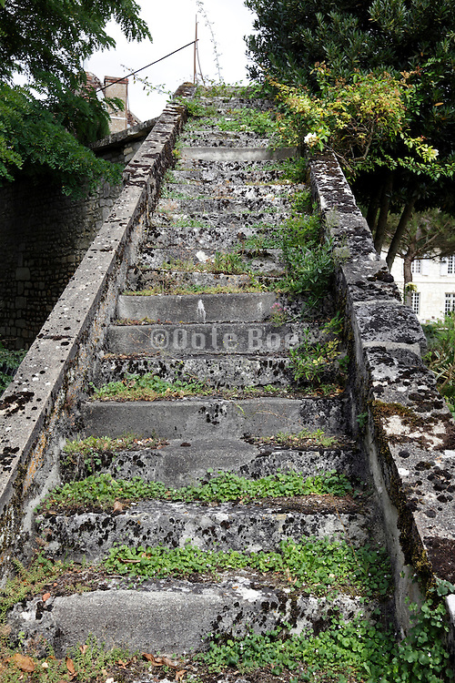 old stairs overgrown with grass and moss leading to nowhere