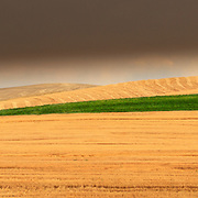 A summer thunderstorm approaches at sunset in the Palouse Region of Washington State near Colfax.
