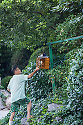 An elderly Chinese man fans himself in Fuxing Park Shanghai, China