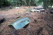Belgie, Arlon, 20-10-2010In de omgeving van Arlon liggen autowrakken in een bos.Aanvankelijk lag het bos over een strook van 100 meter vol met auto's die waren achtergelaten door Amerikanen vlak na de 2e wereldoorlog.Onlangs is dit autokerkhof, waar in de loop van de jaren vele andere sloopwagens terecht waren gekomen, opgeruimd om verdere milieuschade te voorkomen.Foto: Flip Franssen/Hollandse Hoogte