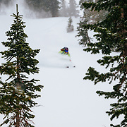 Crystal Wright skis storm powder in the Teton backcountry near Jackson Hole Mountain Resort, Teton Village, Wyoming.