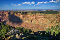 Grand Canyon National Park near Navajo Point, Arizona, USA
