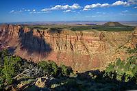 Grand Canyon National Park near Navajo Point, Arizona, USA