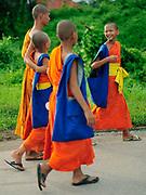 Monks in Nohbo, Thailand