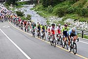 Picture by Alex Broadway/SWpix.com - Tokyo 2020 Olympics - 24/07/2021 - Cycling Men's Road Race - Musashinonomori Park to Fuji International Speedway, Japan - Greg Van Avermaet of Belgium leads the peloton during the men's road race