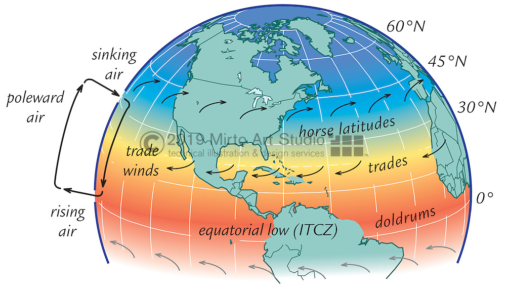 A vector illustration showing the prevailing pattern of surface winds found in the tropics.