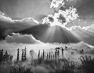 Vietnam Images-Landscape-Nature-sunset-Sapa Hoàng thế Nhiệm Phong cảnh Sapa