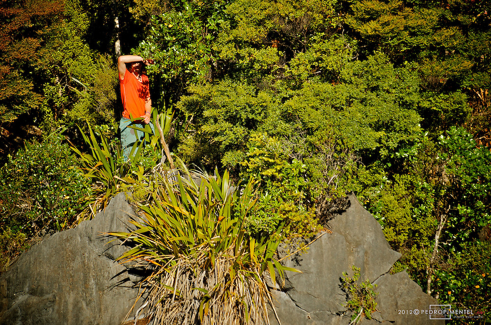 James Clulow on the first sight of a possible line for the Harwoods hole project.  New Zealand.