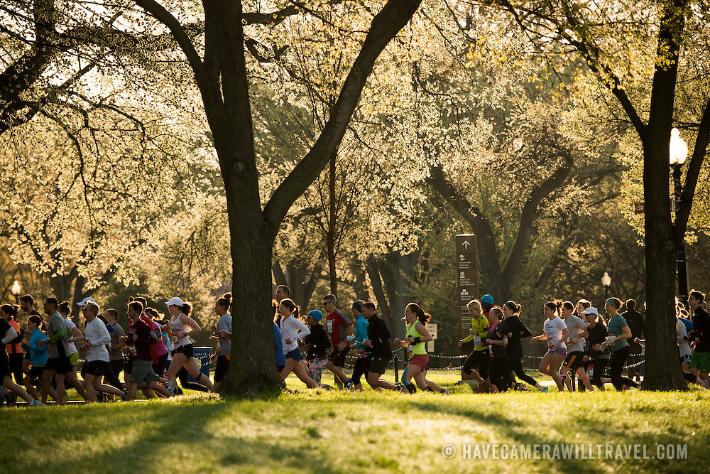 The Cherry Blossom 10-Miler (formally the Credit Union Cherry Blossom 10 Mile Run) is held each spring during the National Cherry Blossom Festival and attracts tends of thousands of runners.