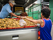 31 AUGUST 2013 - BANGKOK, THAILAND:       A fruit vendor sells longan from the back of pickup truck in front of housing for construction workers. The workers are building the Bhiraj Tower, a new office/retail complex under construction on Soi 35 Sukhumvit Road. It will be approximately 45 storeys when completed. The workers live in a complex of corrugated metal dorms about 1 kilometer from the construction site. They walk to and from the site every day.  PHOTO BY JACK KURTZ