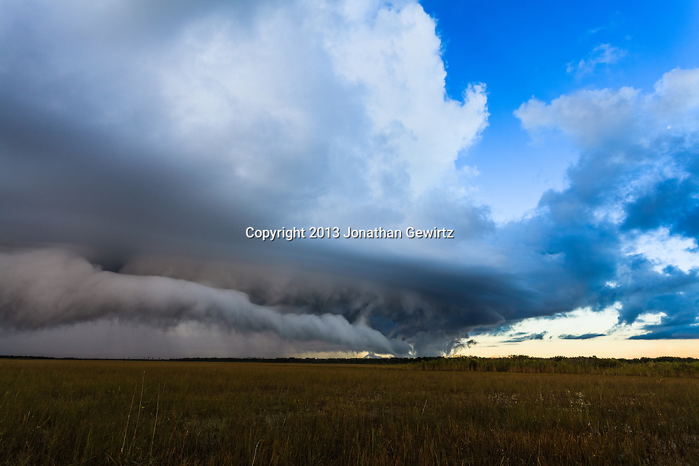 Low clouds on the gust front of a morning rain storm move over the sawgrass prairie in Everglades National Park, Florida. <br /> <br /> WATERMARKS WILL NOT APPEAR ON PRINTS OR LICENSED IMAGES.<br /> <br /> Licensing: https://tandemstock.com/assets/12611260