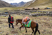 Trek with saddled horse by thatched-roof houses in Yanta Quenua Valley near Huillca, in the Cordillera Blanca, Andes Mountains, Peru, South America. Day 5 of 10 days trekking around Alpamayo in Huascaran National Park (UNESCO World Heritage Site).